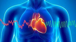 النمر: 90% من أمراض شرايين القلب يمكن تفاديها بهذه الأشياء