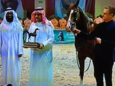 مسابقة الخيول.jpg0