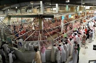 مسالخ أمانة المدينة المنورة تستقبل 140 ألف رأس من الأنعام خلال ثلاثة أشهر - المواطن