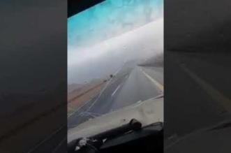 بالفيديو.. مُسنة تقود سيارتها تحت زخات المطر - المواطن