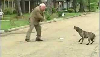 مسن شجاع يواجه كلب