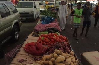 بالصور.. مصادرة 6 طن خضروات وضبط 22 وافدًا مخالفًا بالرياض - المواطن