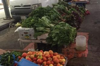مصادرة خضروات الرياض 8