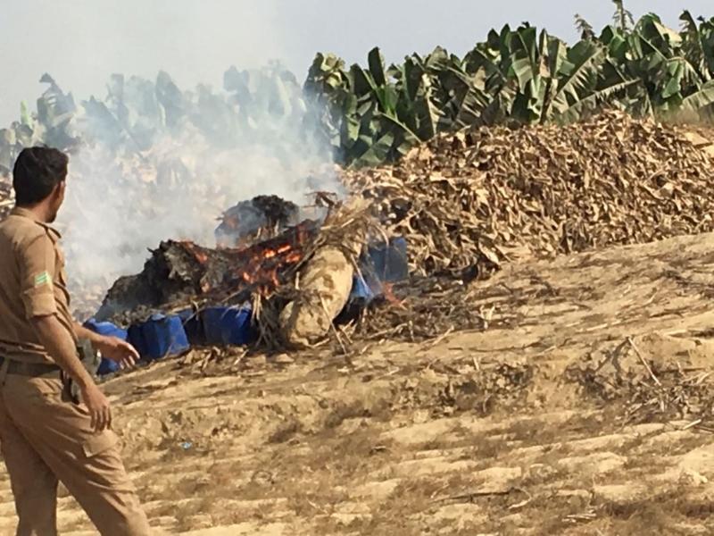 شاهد..الإطاحة مخالفًا مصانع للخمور بمزارع الموز جازان مصانع_خمور-ومخالفين-