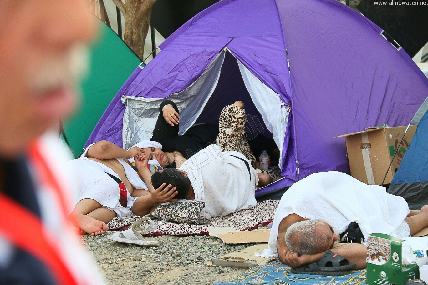 شاهد بالصور.. افتراش وتكدس ومطابخ متنقلة في صعيد عرفات - المواطن
