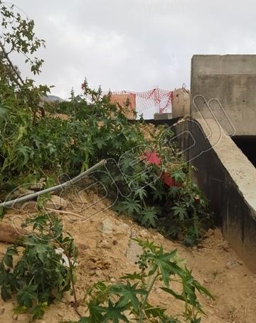 معاناة مستخدمي عبّارة قرية غمدة في الباحة (2)