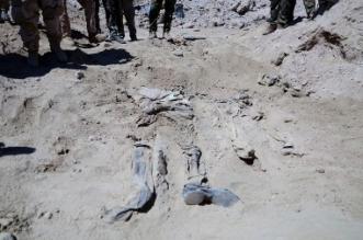 شاهد.. العثور على رفات 89 جثة وسط تكريت - المواطن