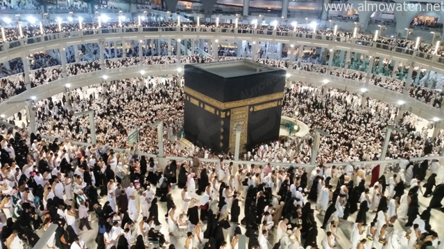 """علماء يطالبون بضرورة التعاون لإنجاح """"الحج عبادة وسلوك حضاري"""" - المواطن"""