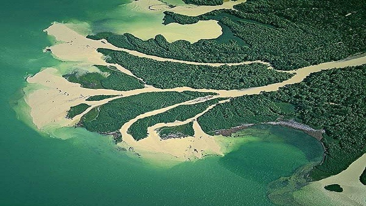 لماذا سكان مناطق مصبات الأنهار في خطر؟