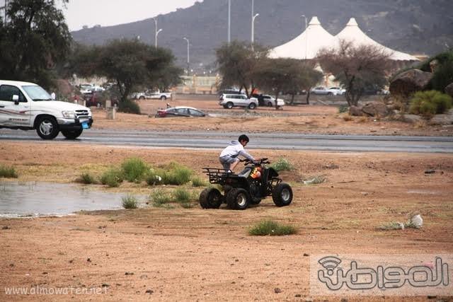 منتزهات مدينة الطائف20