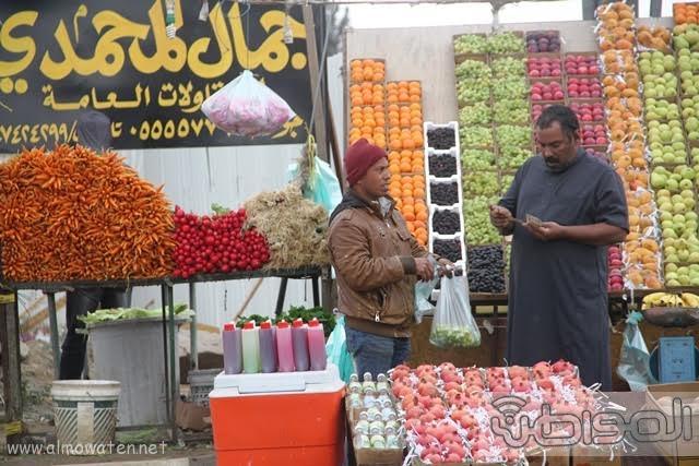 منتزهات مدينة الطائف3