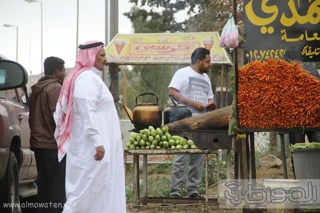 منتزهات مدينة الطائف4
