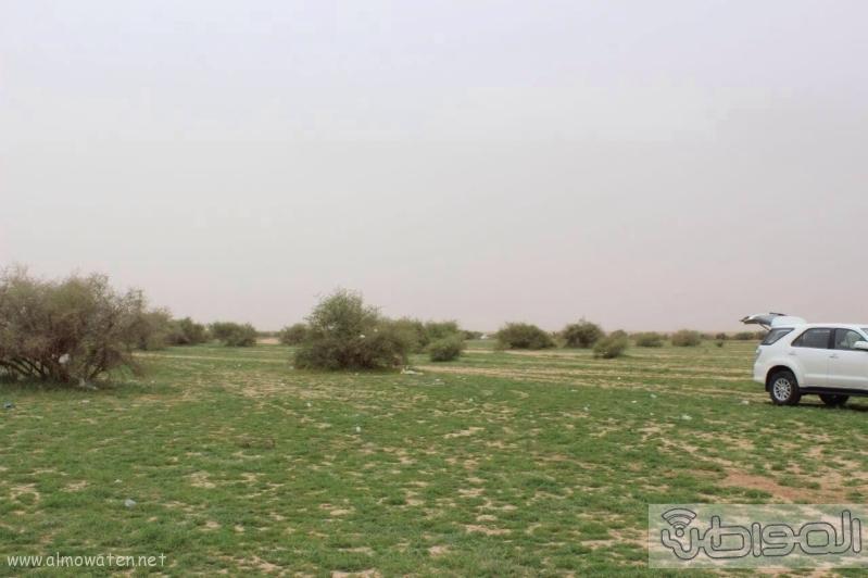 منتزه أم العصافير (210212282) 