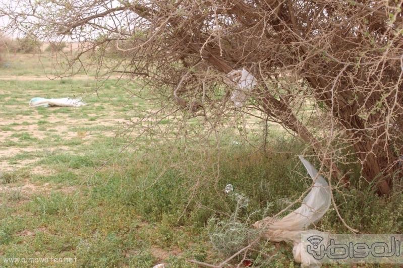 منتزه أم العصافير (210212284) 