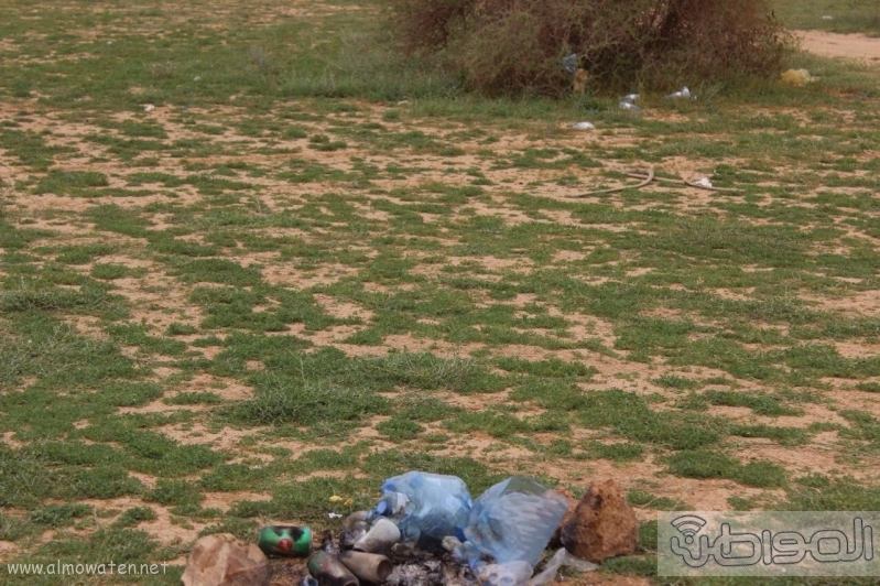 منتزه أم العصافير (210212291) 