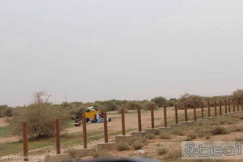 منتزه أم العصافير (210212292) 