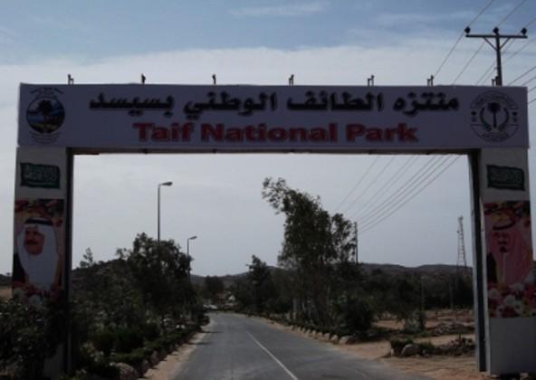 منتزه سيسد الوطني بمدينة الطائف