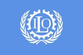 منظمة العمل الدولية تحذر من ارتفاع معدلات البطالة - المواطن