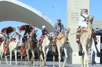 تحصين 3200 شخص ضد الإنفلونزا في مهرجان الملك عبدالعزيز للإبل - المواطن
