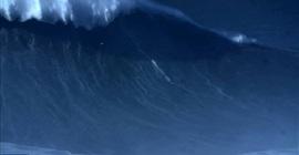 فيديو مثير.. برازيلي يركب أعلى موجة في العالم - المواطن