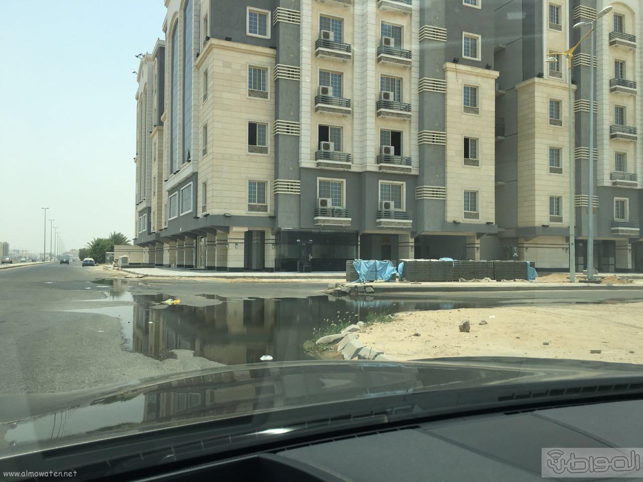 مياه الصرف الصحي تؤرق أهالي حي الورود بجدة (1)