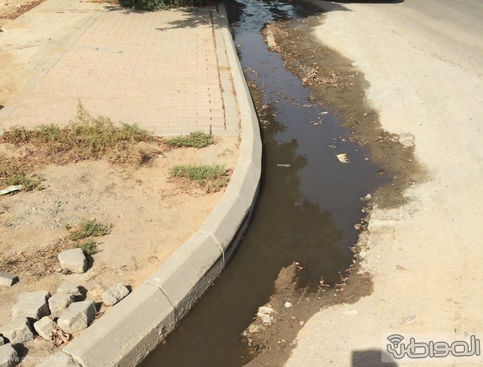 مياه الصرف الصحي تؤرق أهالي حي الورود بجدة (2)