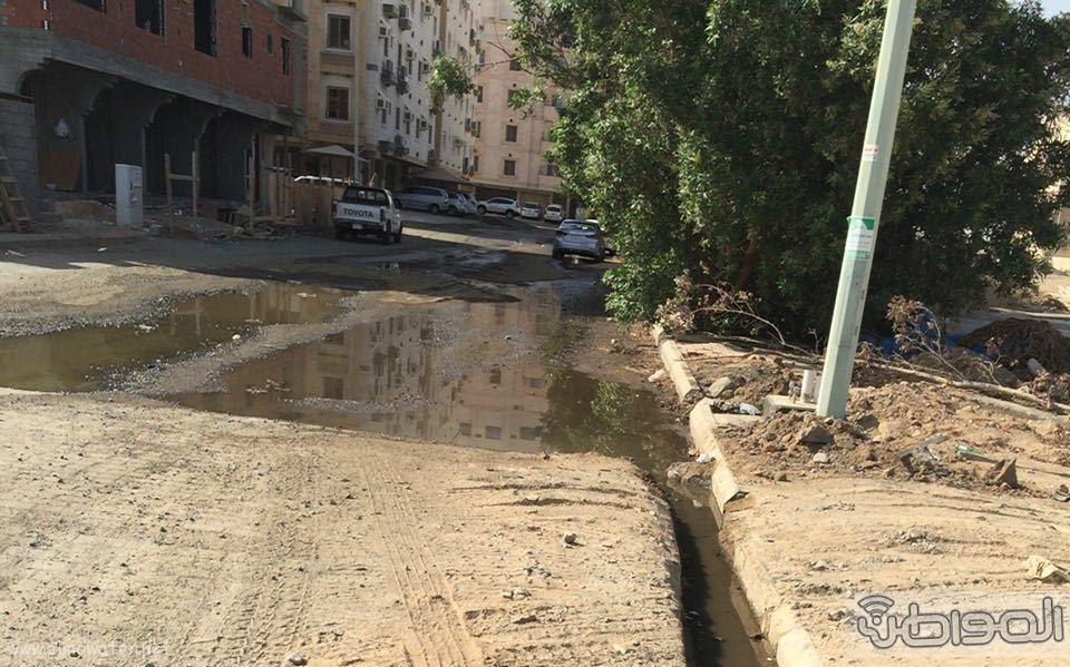 مياه الصرف الصحي تؤرق أهالي حي الورود بجدة (4)