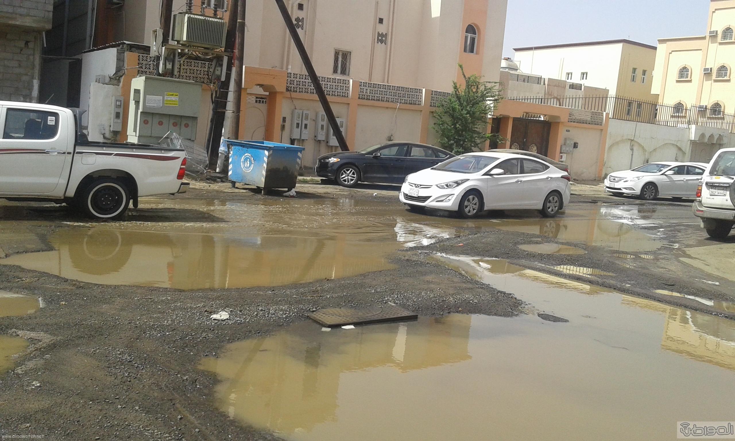 مياه الصرف الصحي تحاصر مسجد ومباني حكومية بروضة جازان (10)