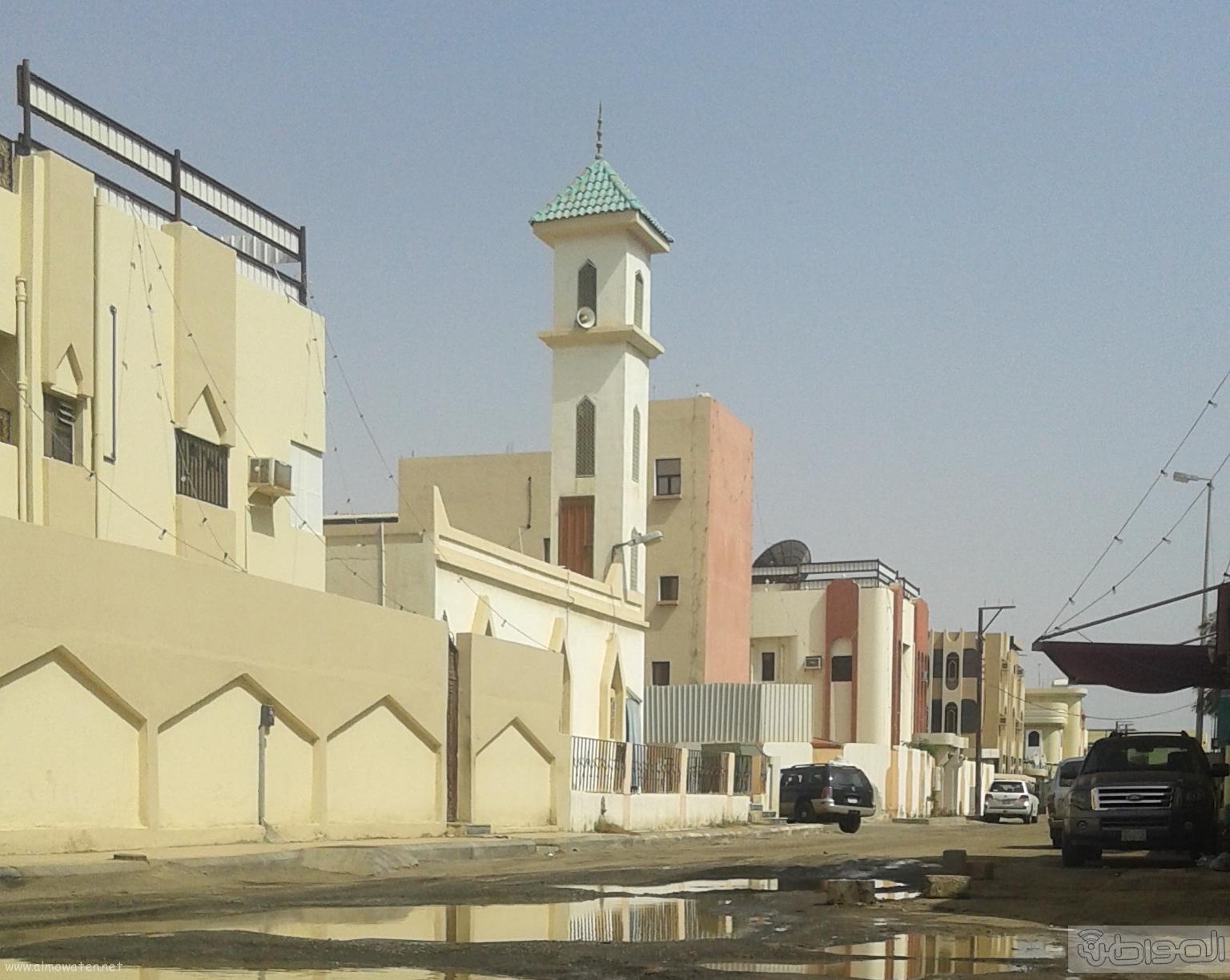 مياه الصرف الصحي تحاصر مسجد ومباني حكومية بروضة جازان (11)
