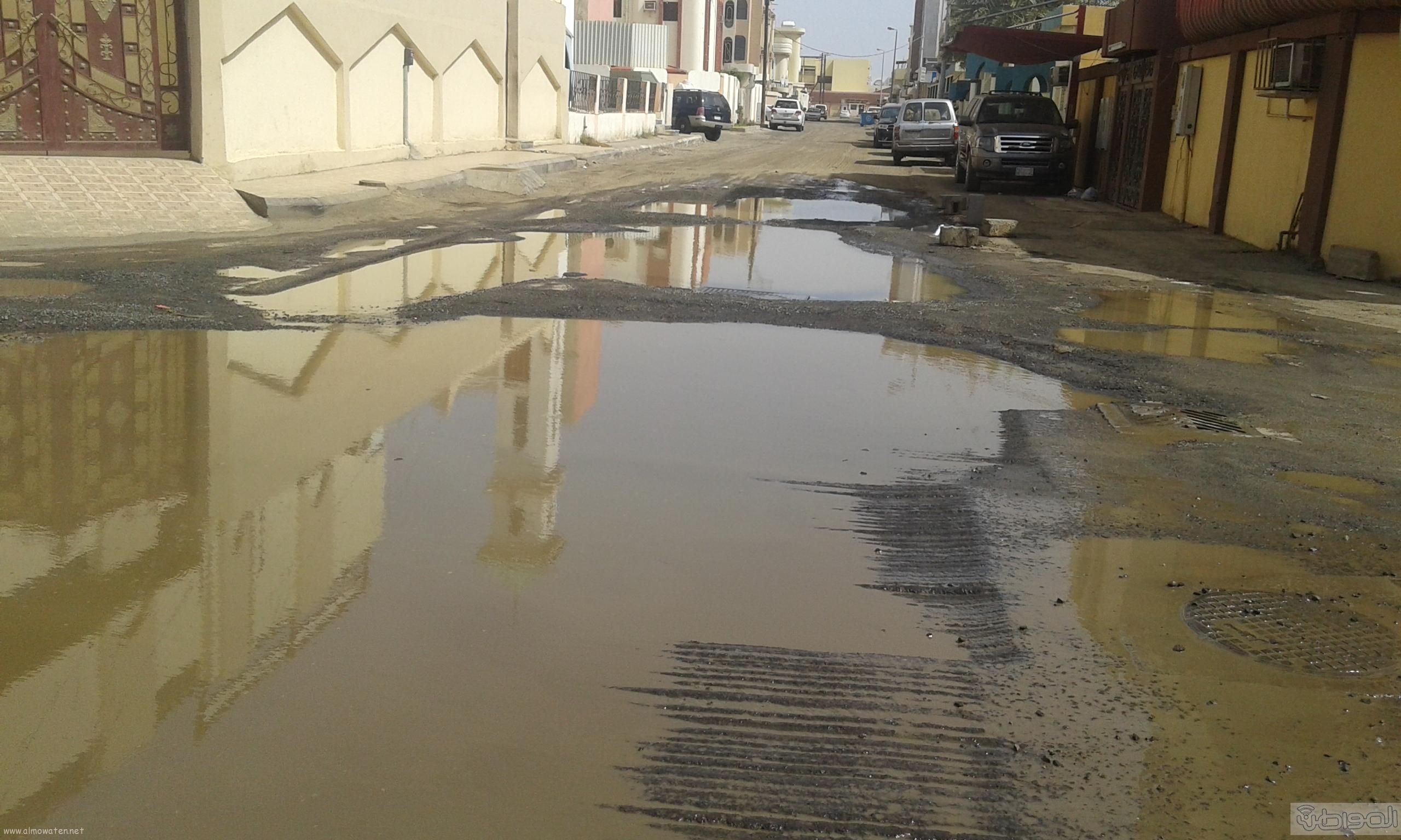 مياه الصرف الصحي تحاصر مسجد ومباني حكومية بروضة جازان (13)