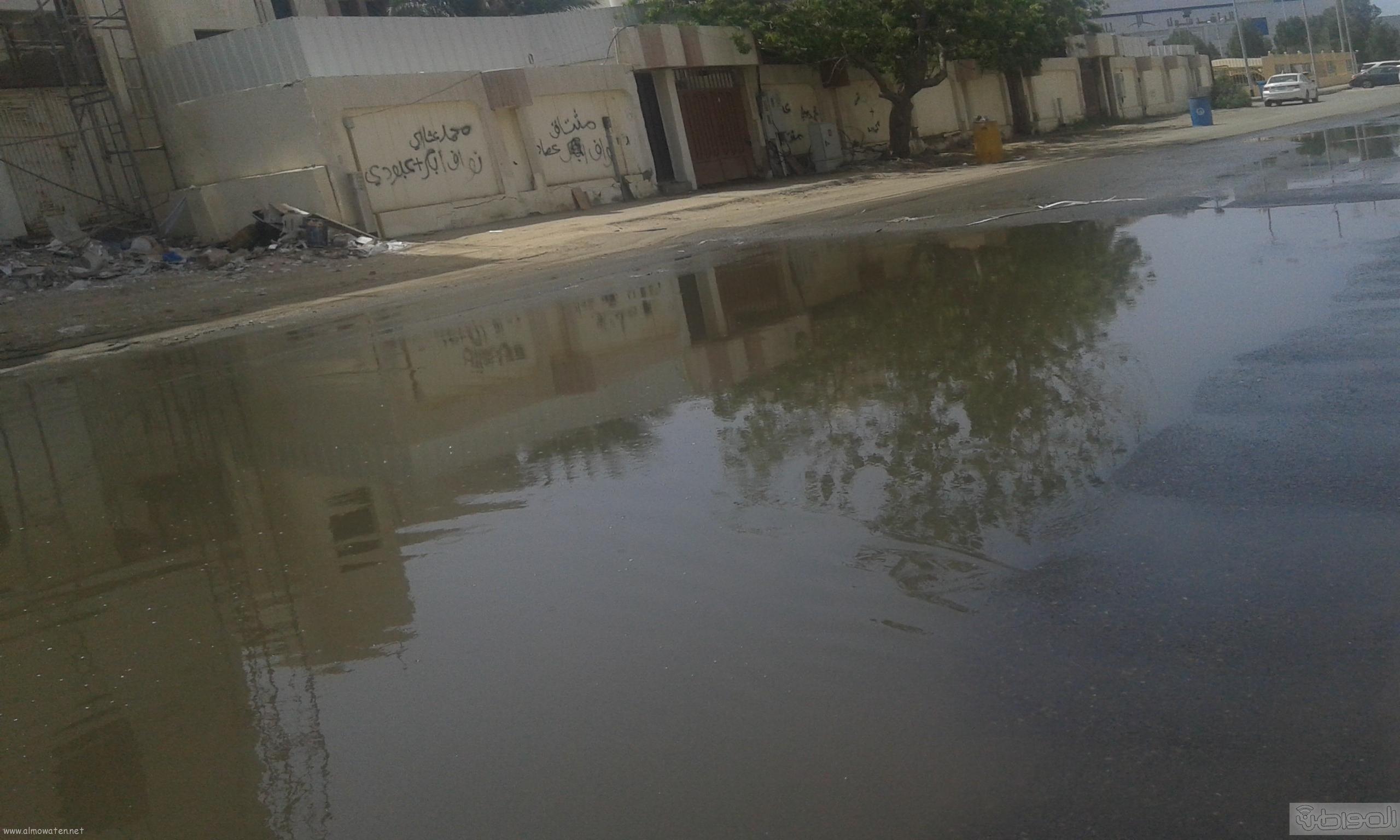 مياه الصرف الصحي تحاصر مسجد ومباني حكومية بروضة جازان (2)