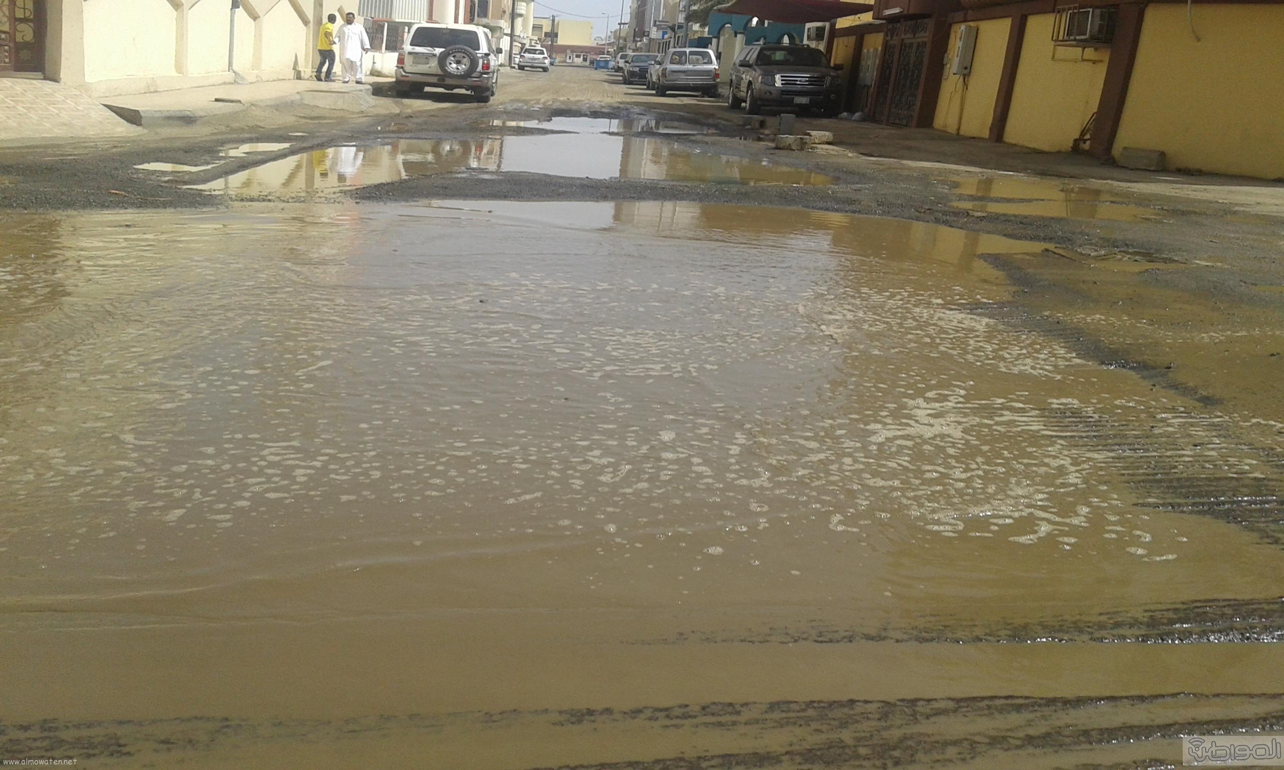مياه الصرف الصحي تحاصر مسجد ومباني حكومية بروضة جازان (6)
