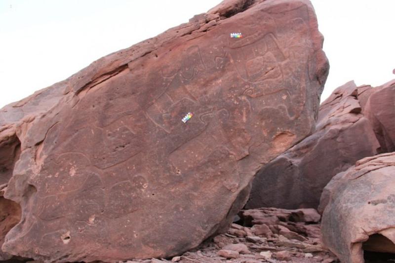 بالصور.. نقوش صخرية تكشف مسيرة الحضارات الإنسانية في المملكة قبل التاريخ - المواطن