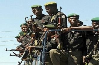 مسلحون يخطفون أكثر من 300 تلميذة في نيجيريا - المواطن