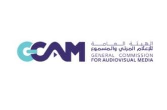 هيئة الإعلام المرئي والمسموع تُصدر 786 ترخيصاً إعلامياً - المواطن