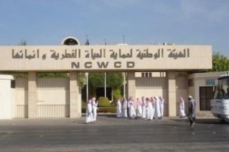 12 وظيفة شاغرة في الهيئة السعودية للحياة الفطرية - المواطن