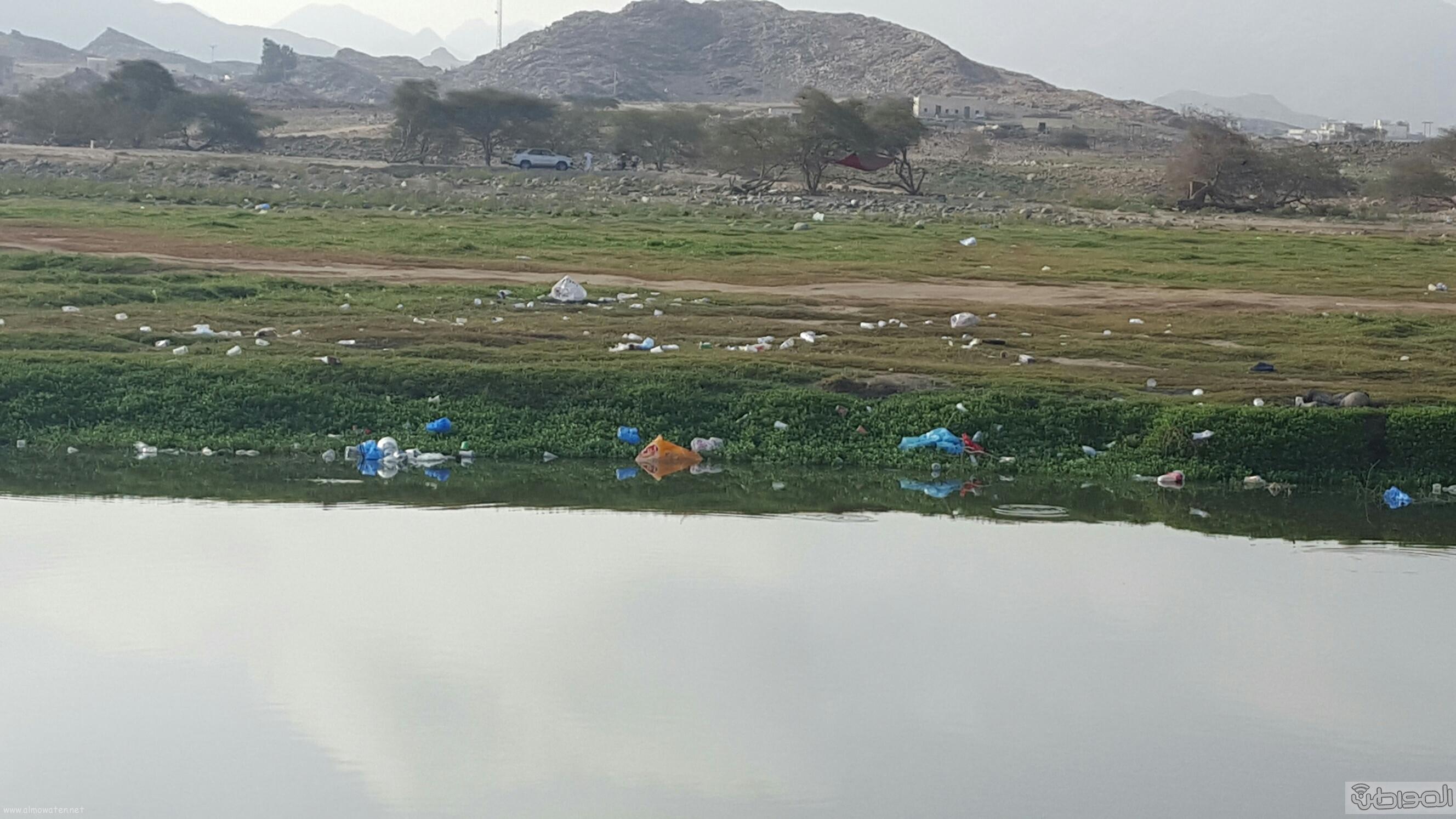 وادي البرداني بمحافظة بارق بعسير (3)