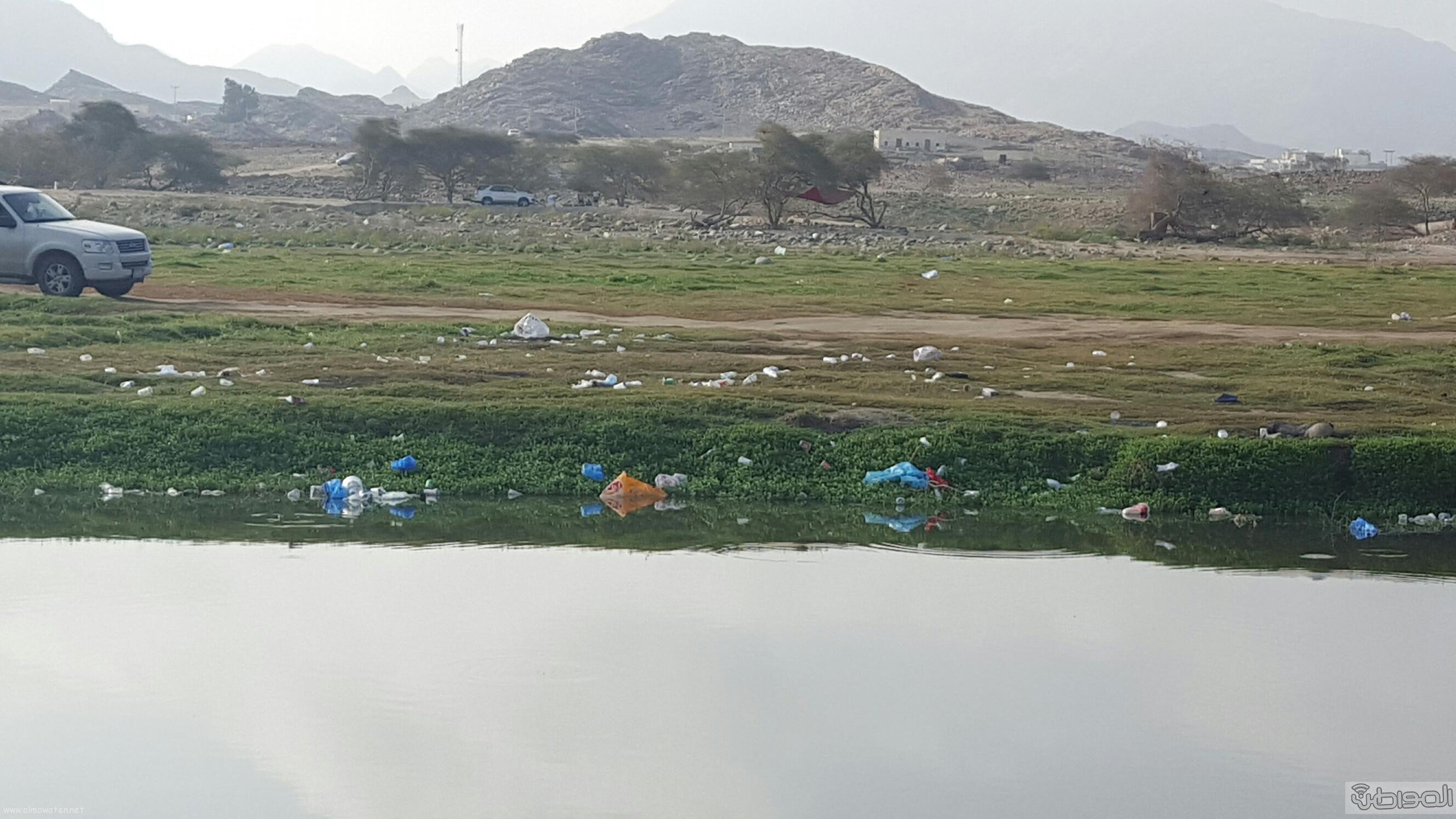 وادي البرداني بمحافظة بارق بعسير (4)