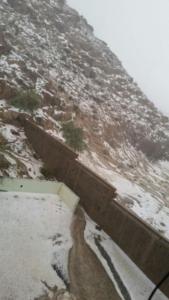 وادي الطايف1