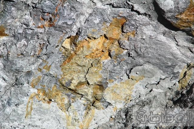 وجود عرق للذهب بالطريق الدائري بالطائف (12)