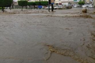 بالصور.. سيول طريق وادي وج المسيال بالطائف تستقطب الأهالي - المواطن