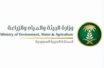 بدء تطبيق لائحة التصاريح البيئية لإنشاء وتشغيل الأنشطة في السعودية - المواطن