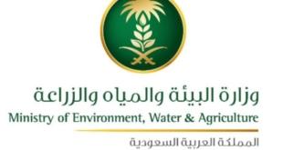 موعد ومتطلبات المقابلة للمرشحين على وظائف وزارة البيئة