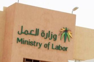 العمل تصدر 52 ألف تأشيرة عمل موسمية خلال حج العام الجاري - المواطن