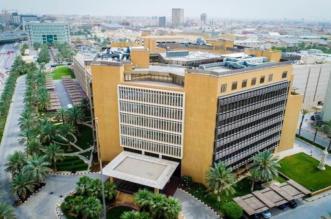 وزارة المالية تعلن 38 وظيفة إدارية شاغرة للنساء عبر جدارة - المواطن