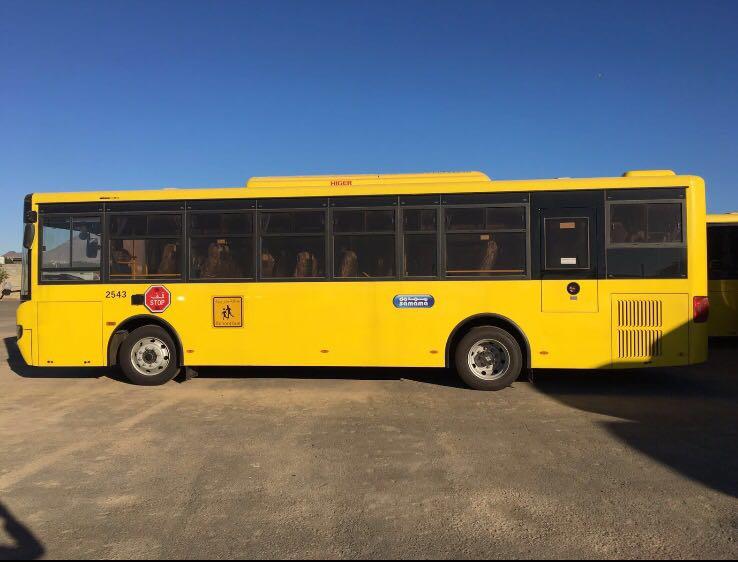 وصول حافلات جازان2