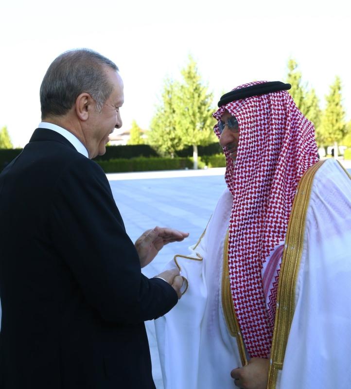 ولي العهد مع اردوغان18