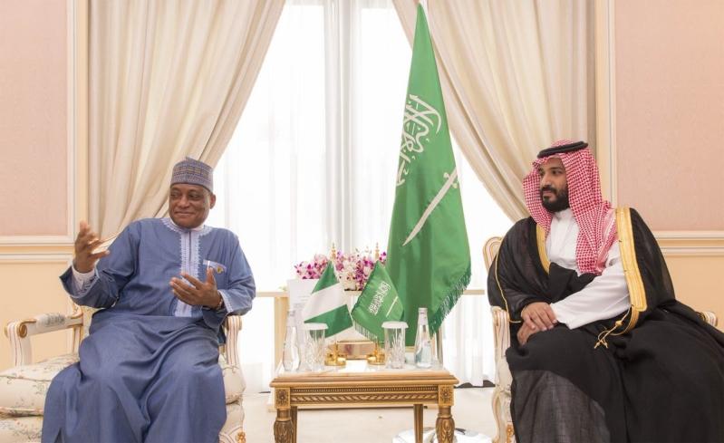 ولي ولي العهد مع وزير الدفاع النيجيري