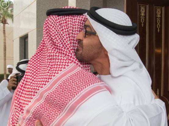 ولي ولي العهد يلتقى مع محمد بن زايد1