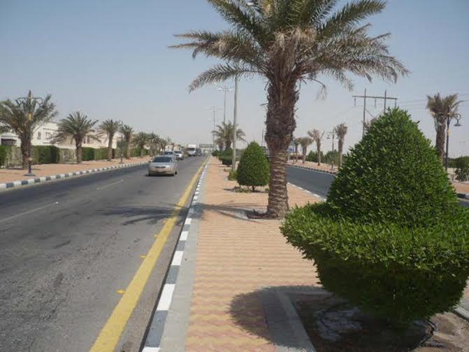 ٢٥٠ مليون ريال مشاريع محافظة بقيق